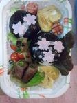 桜の花弁当