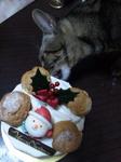 ケーキ食っちゃうなな